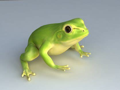 Animals 3D models Download for Free - Part 2