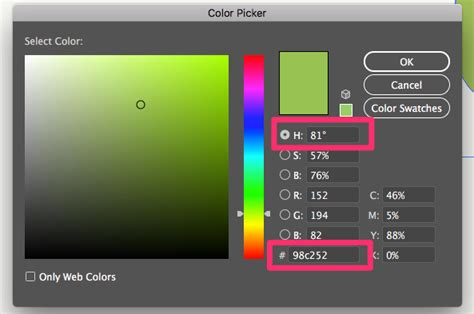 color - How to have Hex automatically selected in